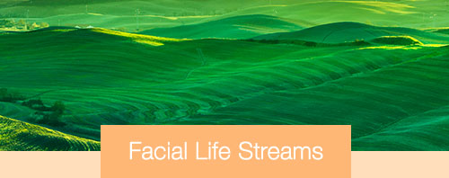 Ausbildung Facial-Life-Streams - Die lichtvolle Anti-Aging-Methode